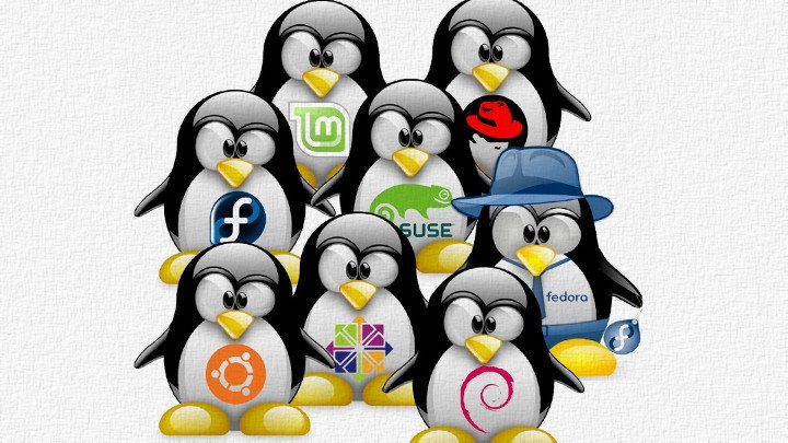 Eight Tux Penguin animations, each with a different linux distribution logo on their fronts.